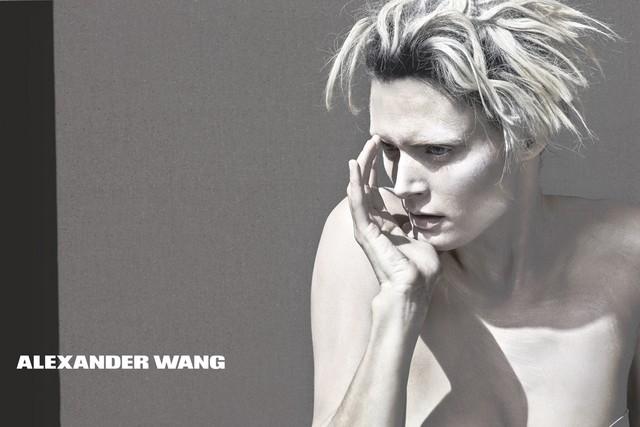 alexander wang estate 2013