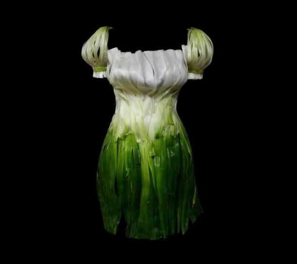 vestito di cipolle