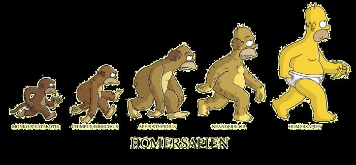 Evoluzione_dell'Homer_Sapiens