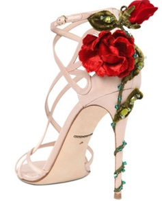 keira shoes 2015 d&g