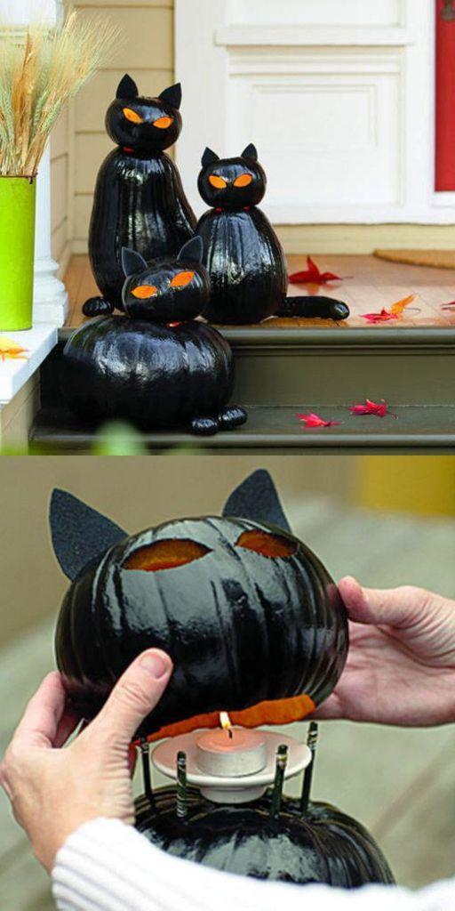 zucche-halloween-gatto