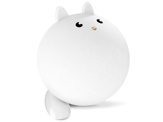 pupa-natale-gatto-bianco
